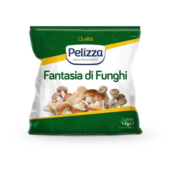 Fantasia-di-funghi